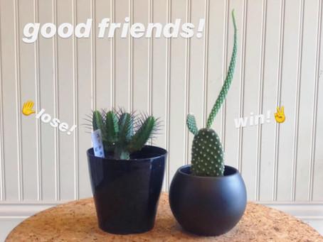 お友達〜!