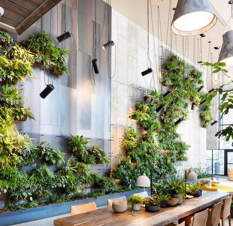 living wall.jpg
