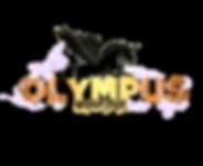 logo olympus.png