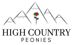 High Country Peonies