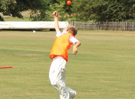 At Home Cricket: Week 3