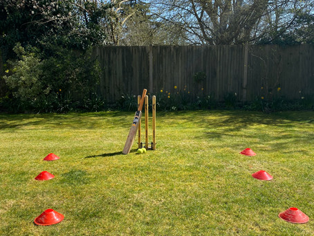 At Home Cricket: Week 1