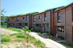 habitat-participatif-verger-de-sylvestre-photo-11
