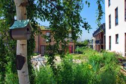 habitat-participatif-verger-de-sylvestre-photo-3