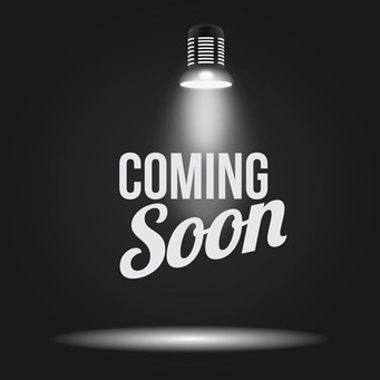 "NERDS RULE INC. T.R.I.B.E Ambassador Zion Oden ""Project L.I.O.N"""