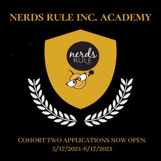 NERDS RULE INC ACADEMY and Catalyst Black Academy Leadership Fellows Mentoring Program Cohort Two