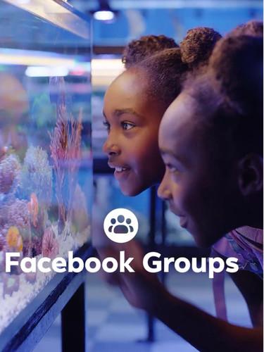 Facebook Commercial