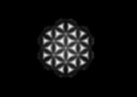 FlowerOfLife$$.png