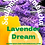 Thumbnail: SoulSmith Lavender Dream Kombucha 32 fl. oz.
