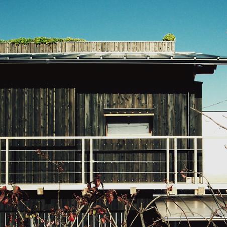芝棟の家 オープンアトリエ 7days