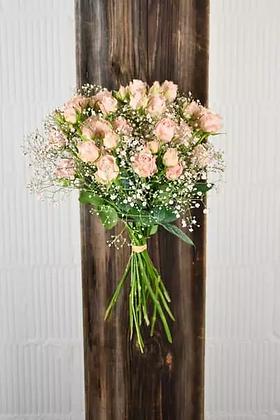 Polyantha-Rosen-Strauss Rosa