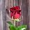 Thumbnail: Rote Rosen