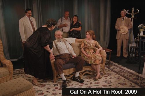 CatHotRoof2009_edited.jpg