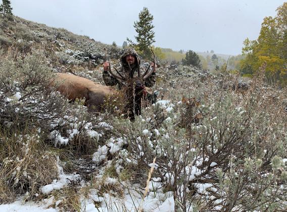 Elk_2019_10 John S