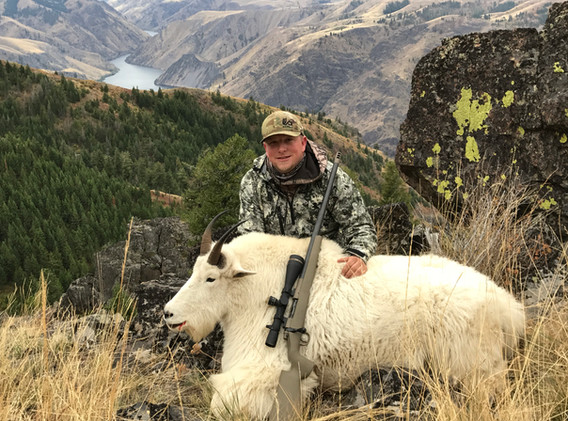 Goat_2019_9c Jesse P_High Country R