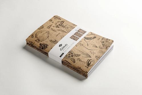Science Notes Kraft Notebook by Denik, 3 pack