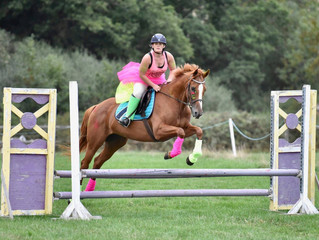 Over £600 raised for Rowcroft Hospice at Redpost Show's Charity Show Jumping Show!