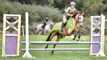 Fancy Dress Showjumping Show in aid of Rowcroft Hospice!