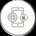 Smarsoft Consulting IOS App