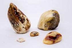 Stones (53 of 86)