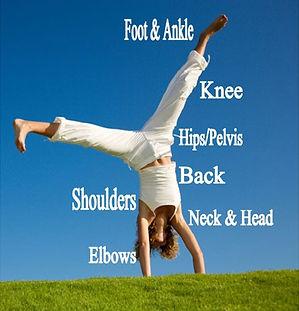 We treat: foot, ankle, knee, hips/pelvis, back, shoulders, elbows, neck and head issues