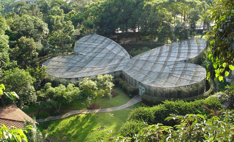 jardin-botanico-del-quindio-mariposario-