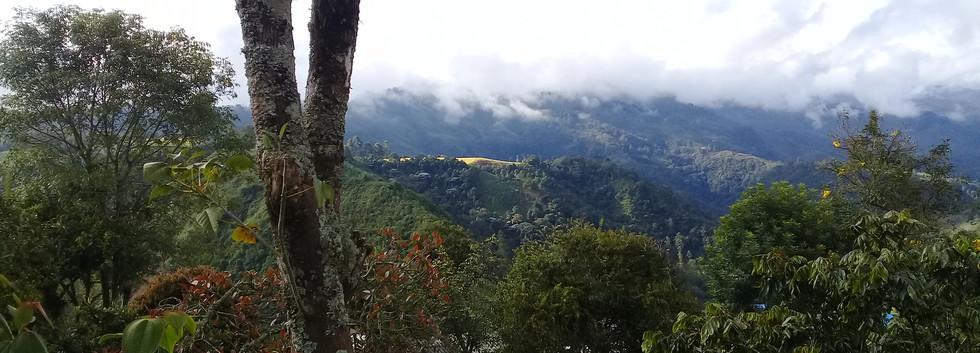 vista del paisaje cabalgata