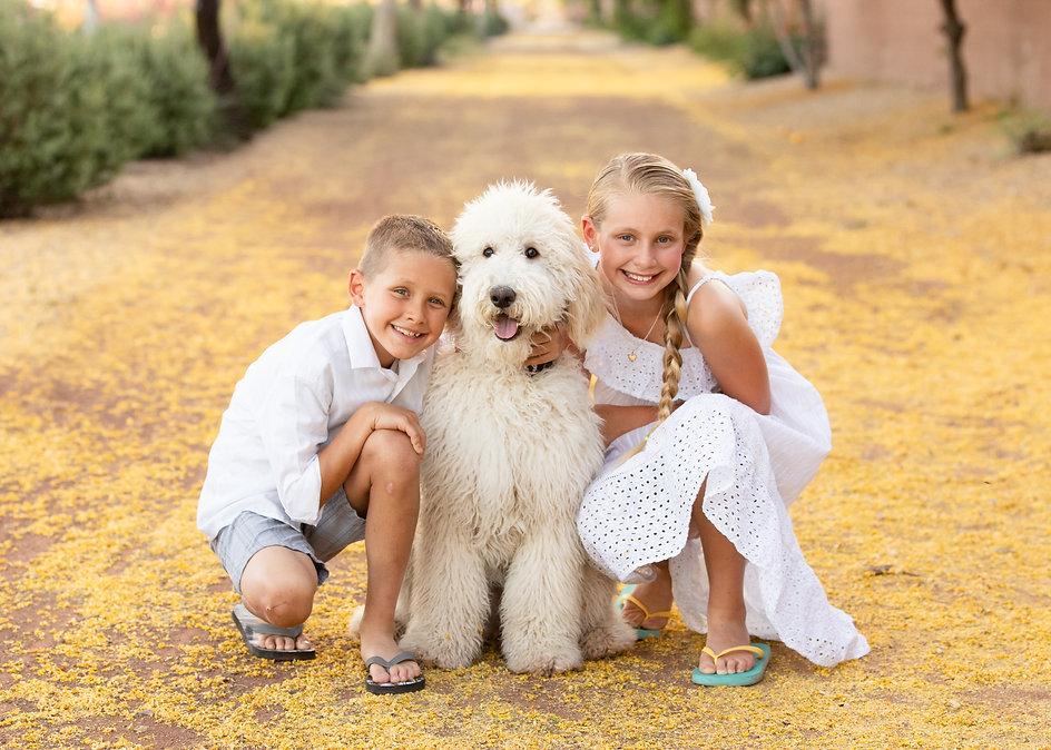 Arizona Family Photographer Lindsay Jenks
