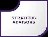 Strategic Advisors Segment updated.png