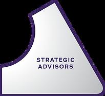 Strategic Advisors Segment small.png