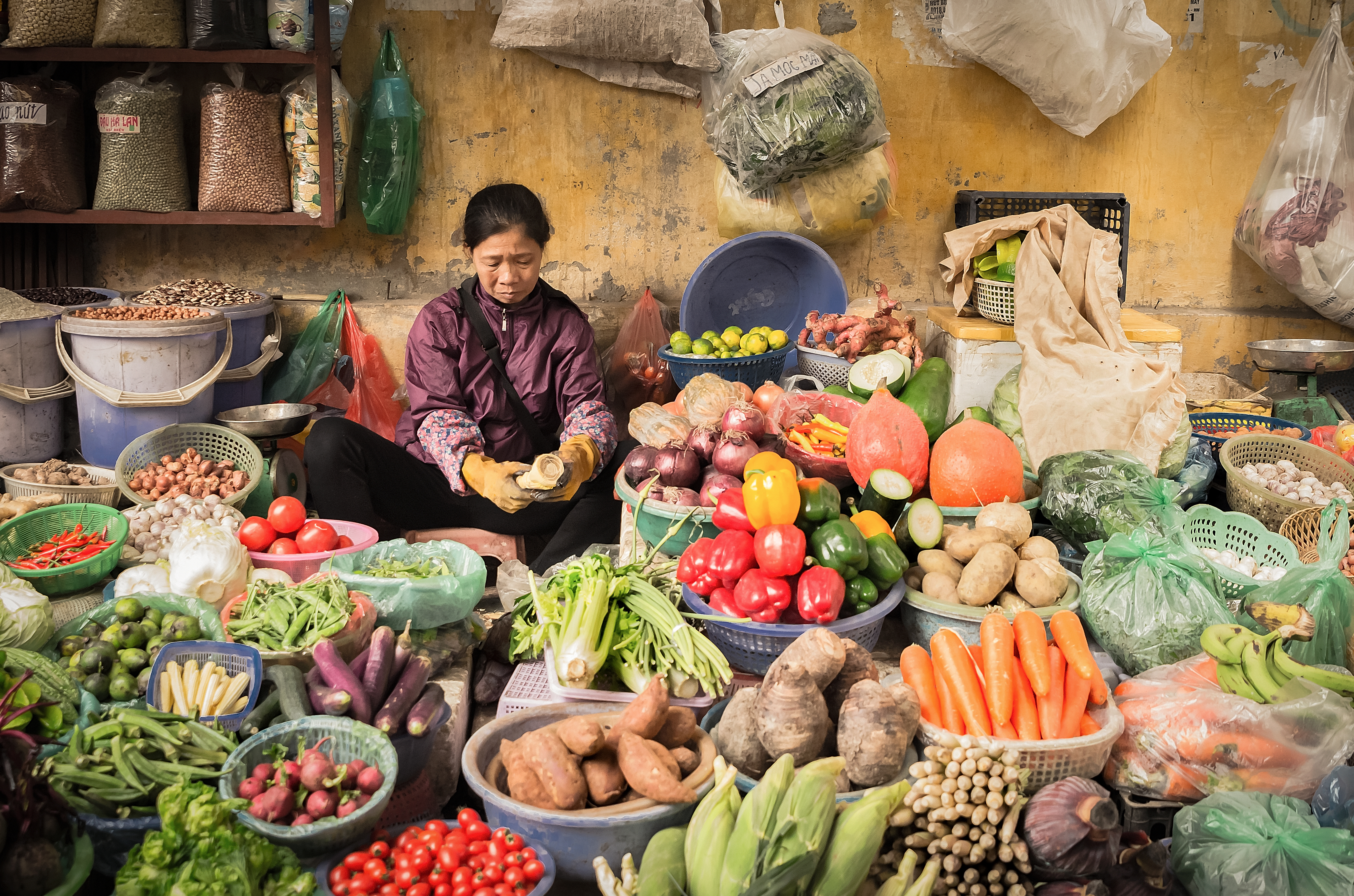 Hanoi market - Vietnam