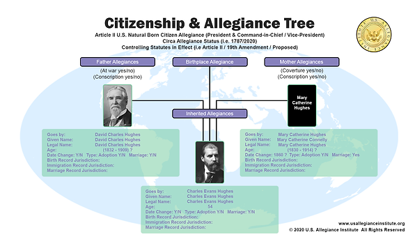 Citizen & Allegiance Tree v5a 8.11.2020.