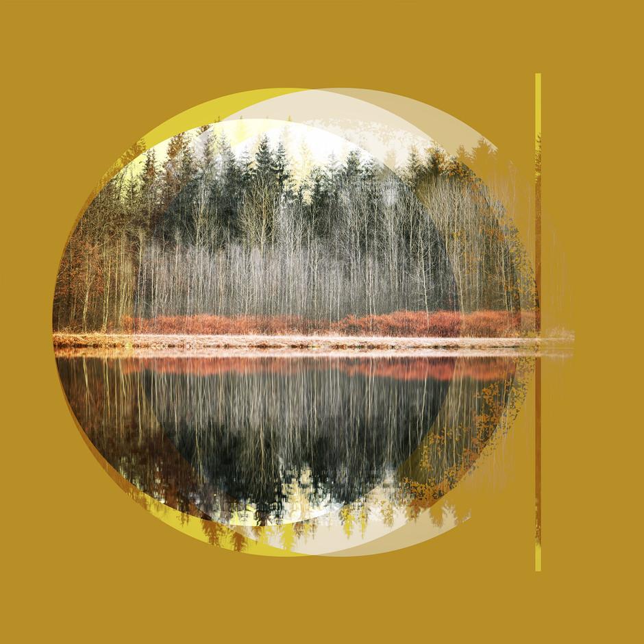 Kunstprojekt_Bäume1_LQ.jpg