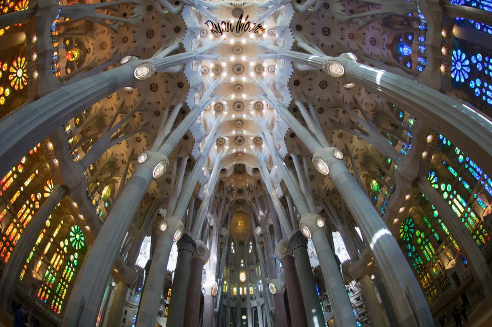 Sagrada Familia Ceiliing