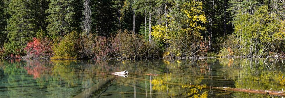 Olive Lake, BC