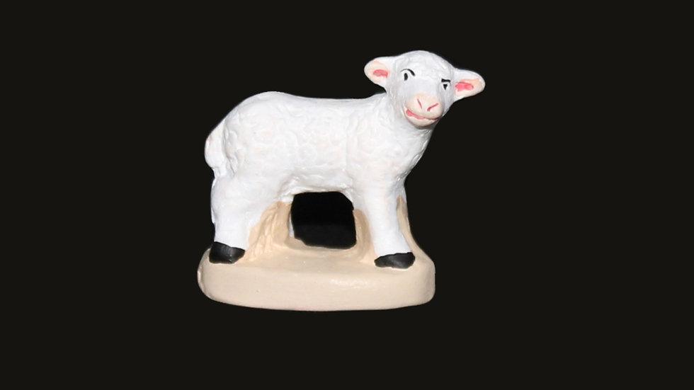 Mouton regardant