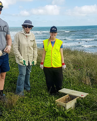 Sandy Bay planting & trapping 23 Sept 20