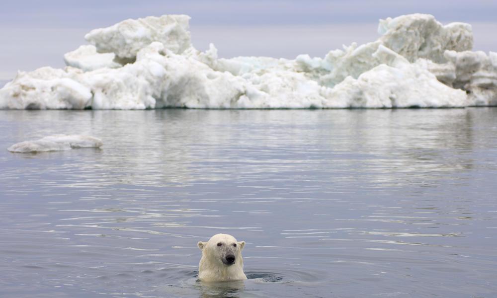 Polar_Regions_Tour_Image_287247.jpg