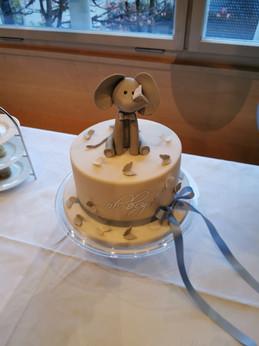 Torte Baby Embolo