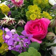 Garden flowers close up.jpeg