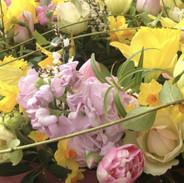 Landscape close up of flowers.jpeg