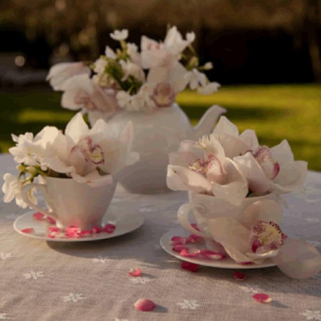 Tea cups and tea pot of orchids.jpeg