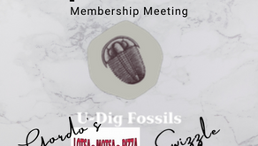 U-Dig Fossils - Old Fossils, New Experience