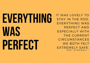 EVERYTHING WAS PERFECT.jpg