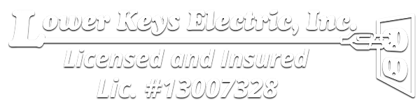 LKE_Logo_lic.png