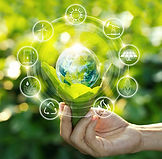 Sustainability-Footprint.jpg