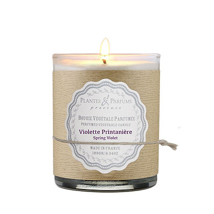 Violette Printanière