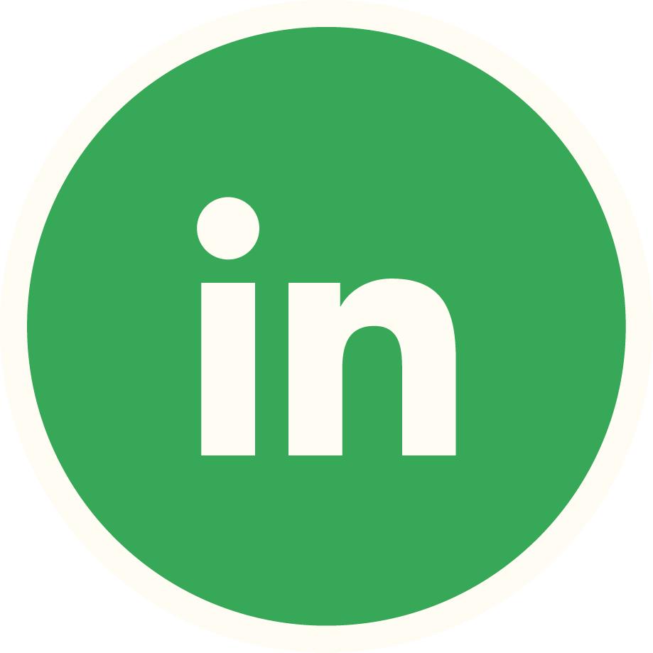 Linkedin Vert Plein