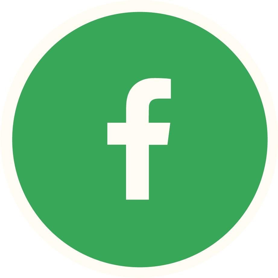 Facebook Vert Plein