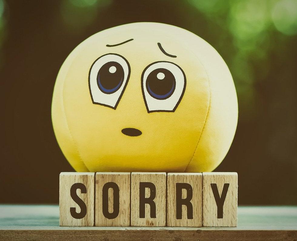 RH Désolé.jpg